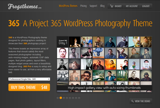 365 Pro WP Theme Blogi:Blogging